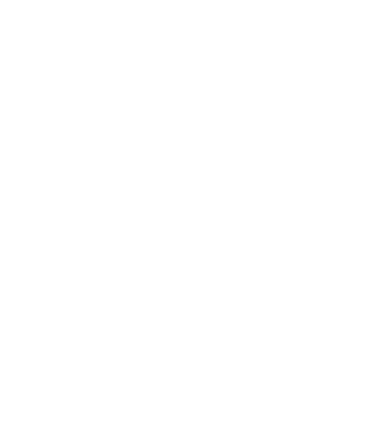 SentriLock LLC